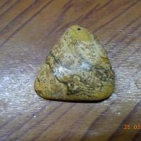 Mặt gỗ hóa thạch vàng