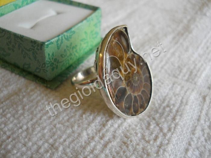 Nhẫn bạc Ốc Anh Vũ hoá thạch