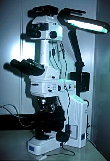 Máy giám định đá quý quan sát độ dày và chiết suất